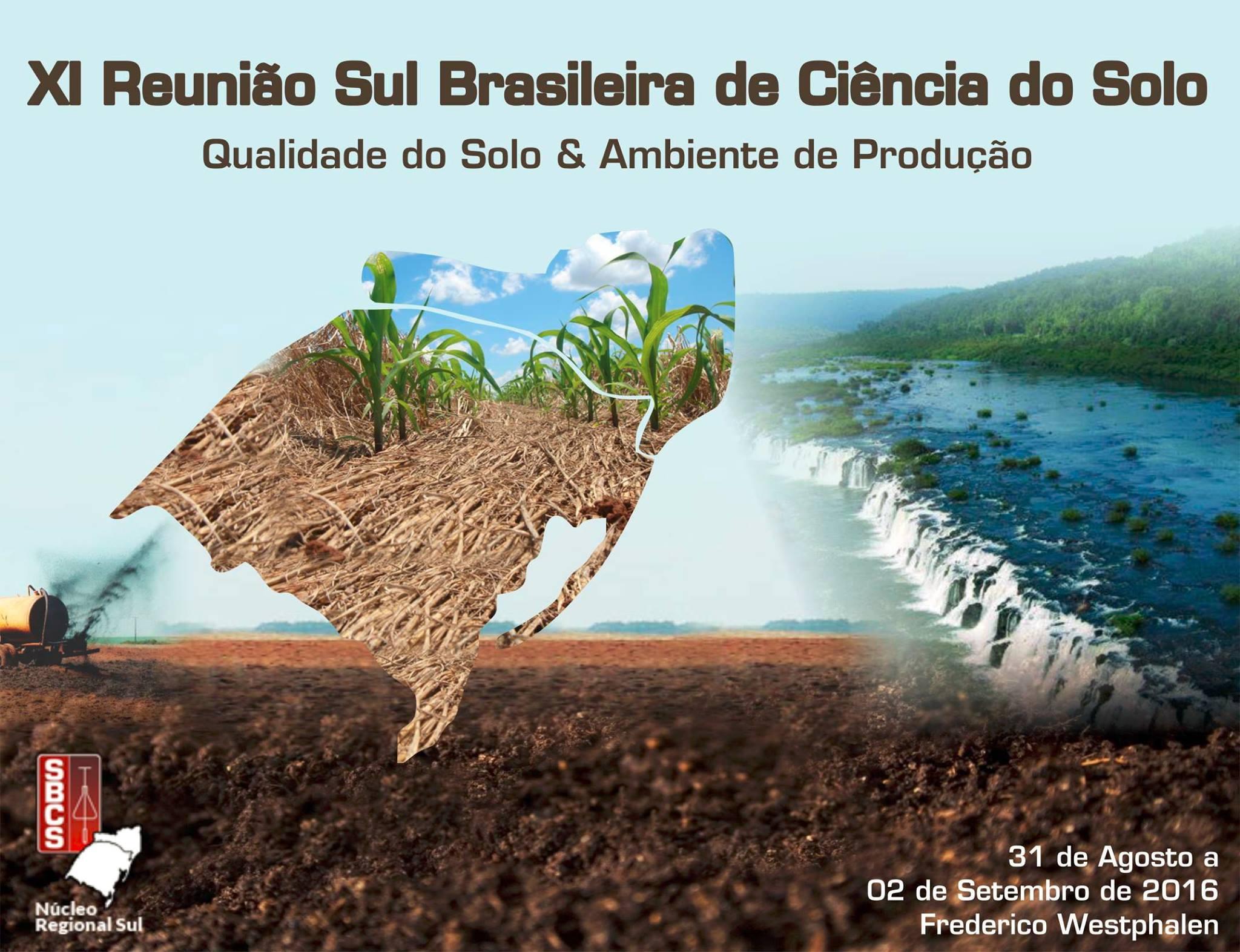 Reunião sul brasileira